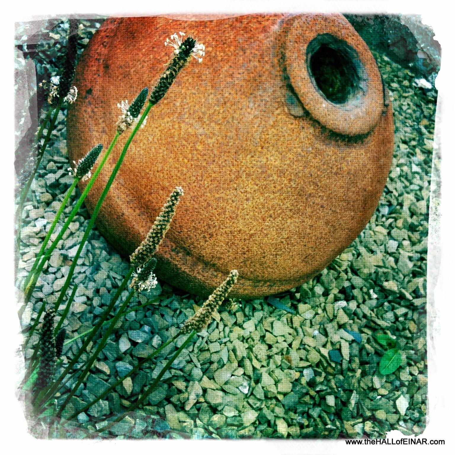 Rusting metal buoy