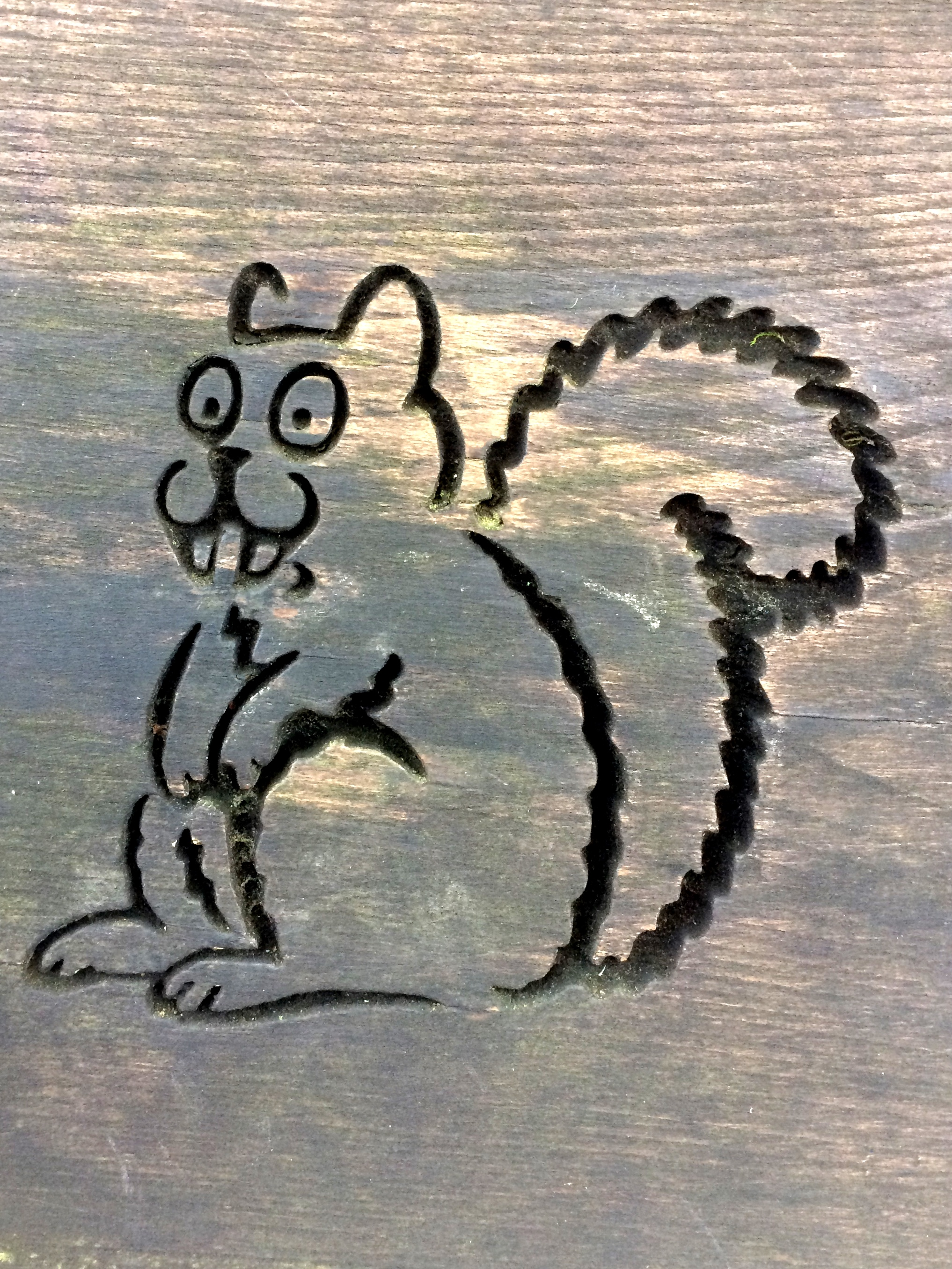 Squirrel - The Hall of Einar - copyright David Bailey (not the)