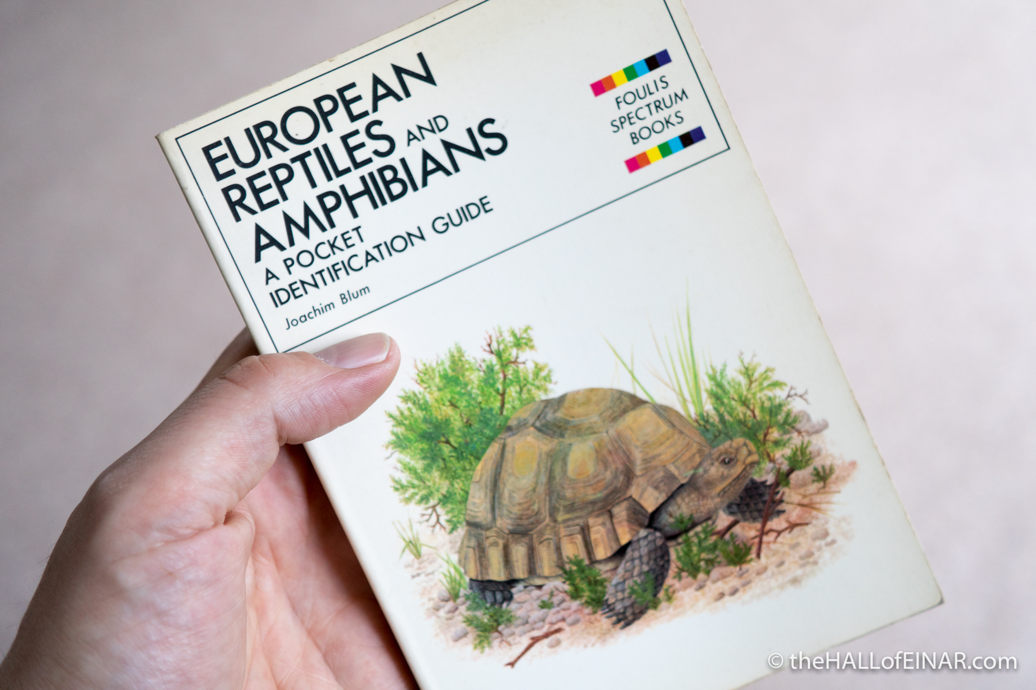 European Reptiles and Amphibians - The Hall of Einar