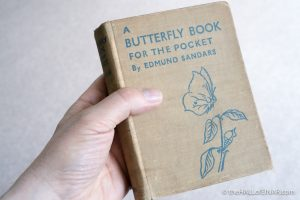 A Butterfly Book - Edmund Sandars - The Hall of Einar