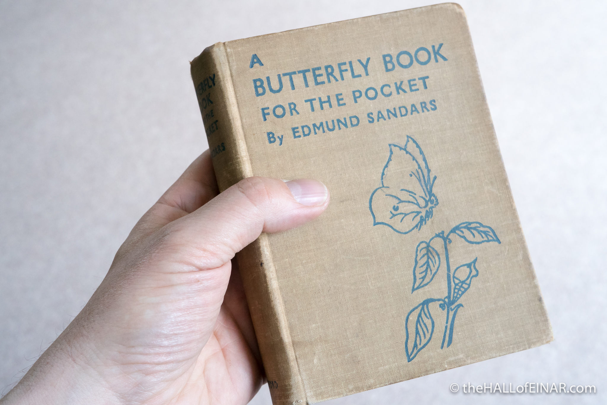 A Butterfly Book - Edmund Sandars - The Hall of Einar