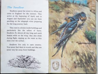 The Second Ladybird Book of British Birds - The Swallow