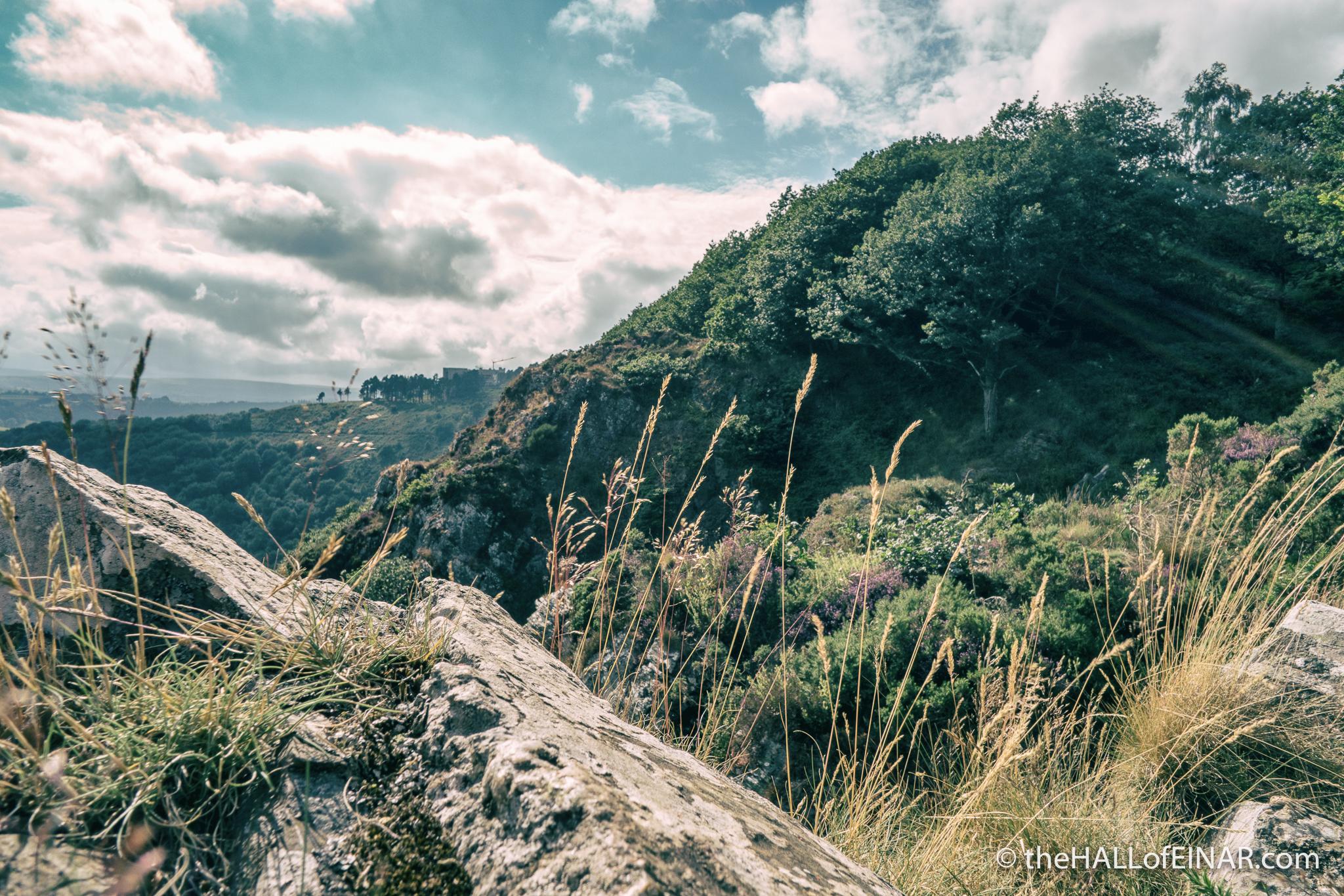 Castle Drogo - The Hall of Einar - photograph (c) David Bailey (not the)