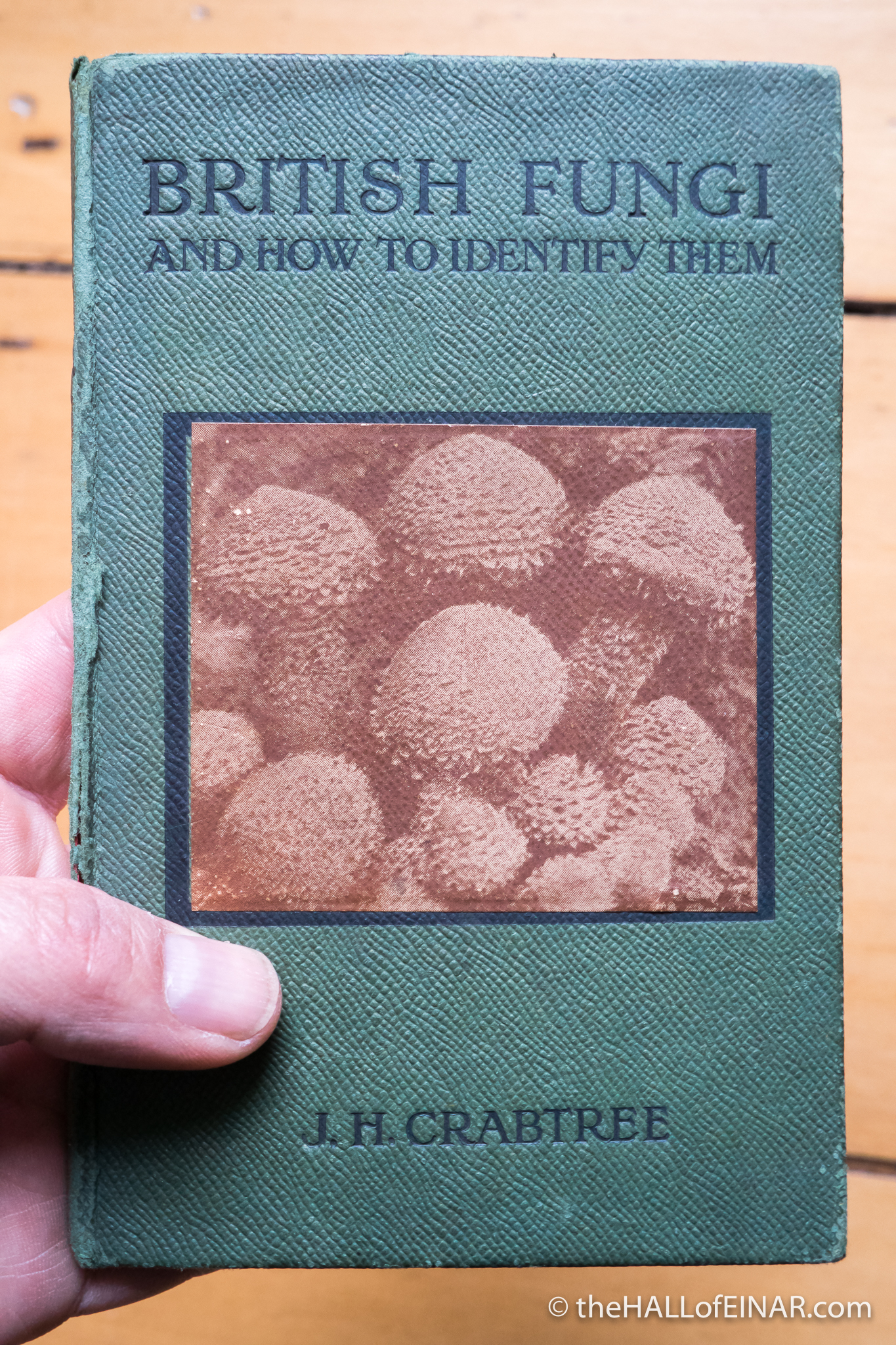 British Fungi by JH Crabtree - The Hall of Einar