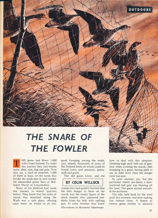 The Snare of the Fowler - The Hall of Einar