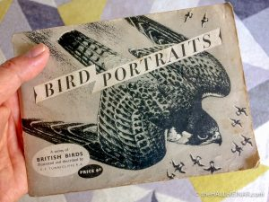 Tunnicliffe's Bird Portraits - The Hall of Einar