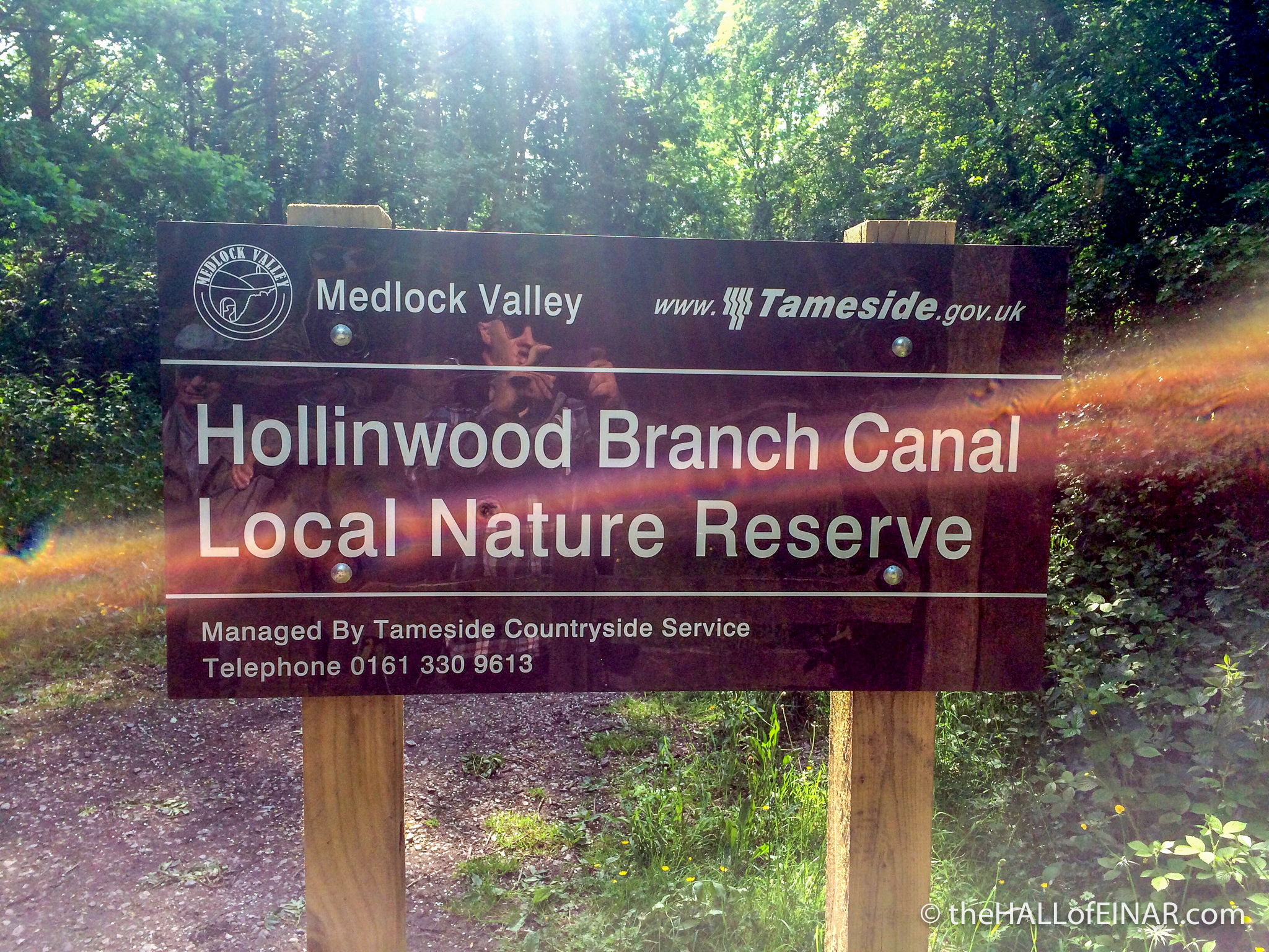 Hollinwood Branch Canal - Local Nature Reserve - The Hall of Einar - photograph (c) David Bailey (not the)
