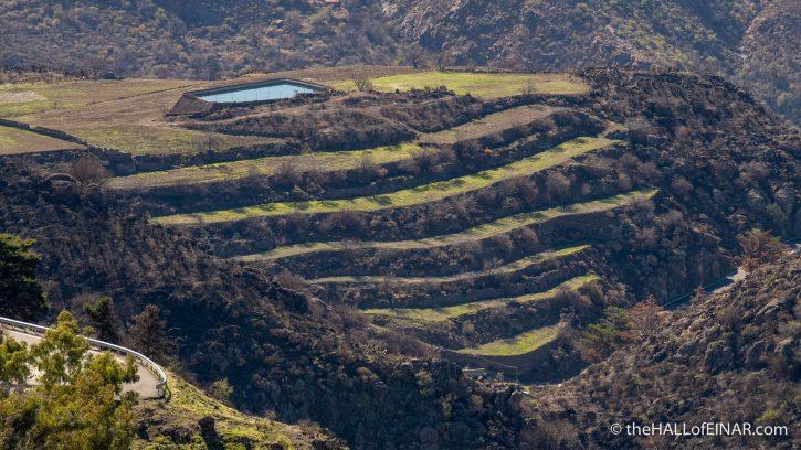 Gran Canaria - The Hall of Einar - photograph (c) David Bailey (not the)