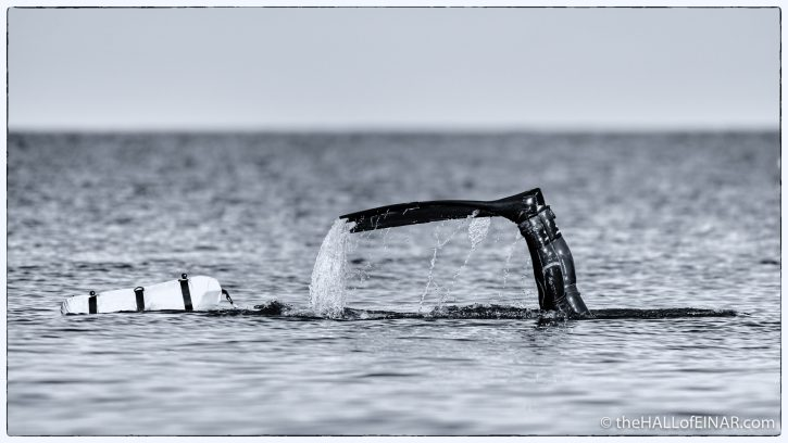 Diver - Brixham - The Hall of Einar - photograph (c) David Bailey (not the)