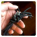 Mice nibble shoe laces