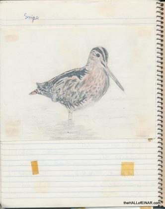 Snipe - The Hall of Einar - (c) David Bailey (not the)
