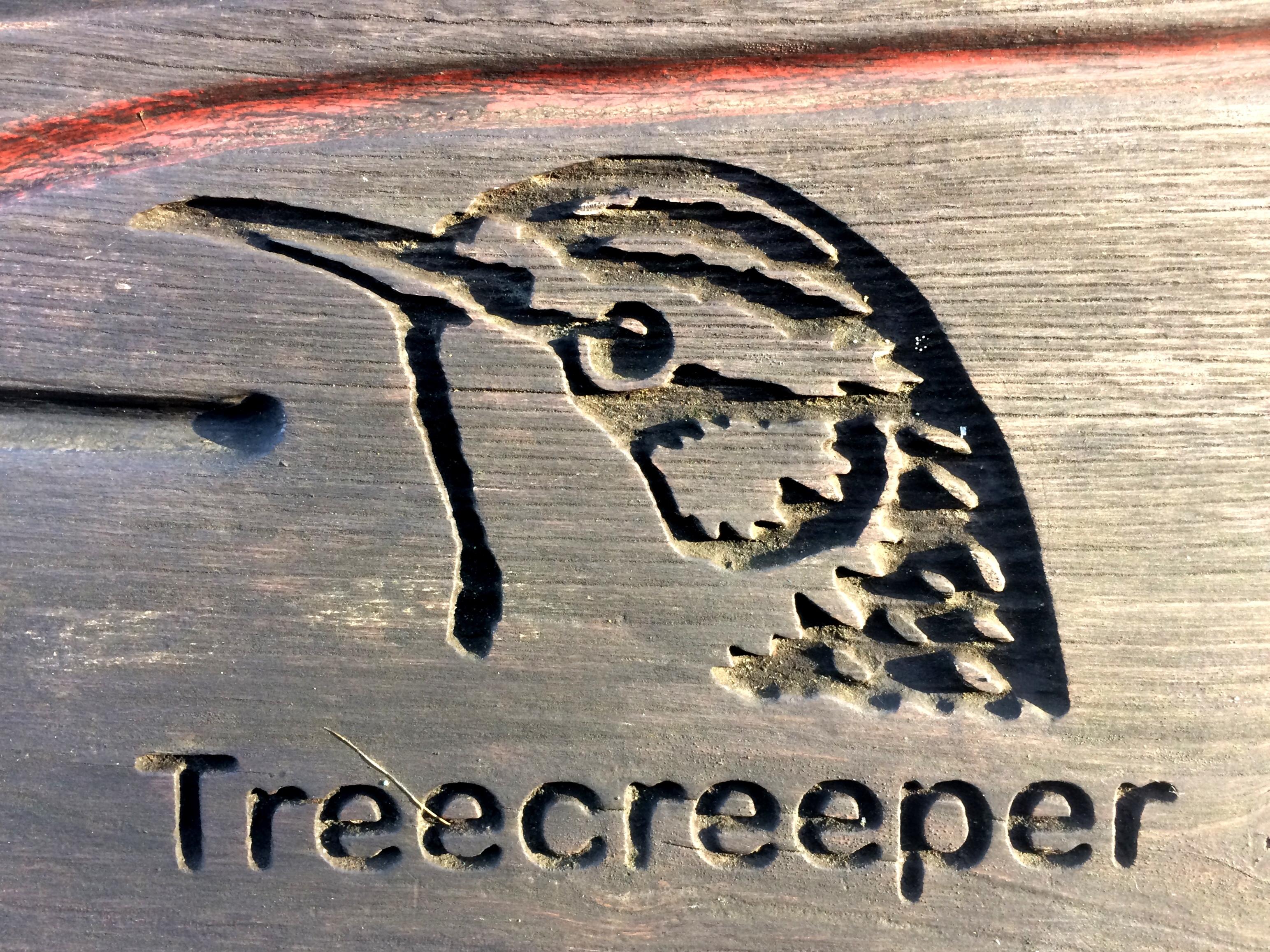 Treecreeper - The Hall of Einar - copyright David Bailey (not the)