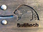 Bullfinch - The Hall of Einar - copyright David Bailey (not the)