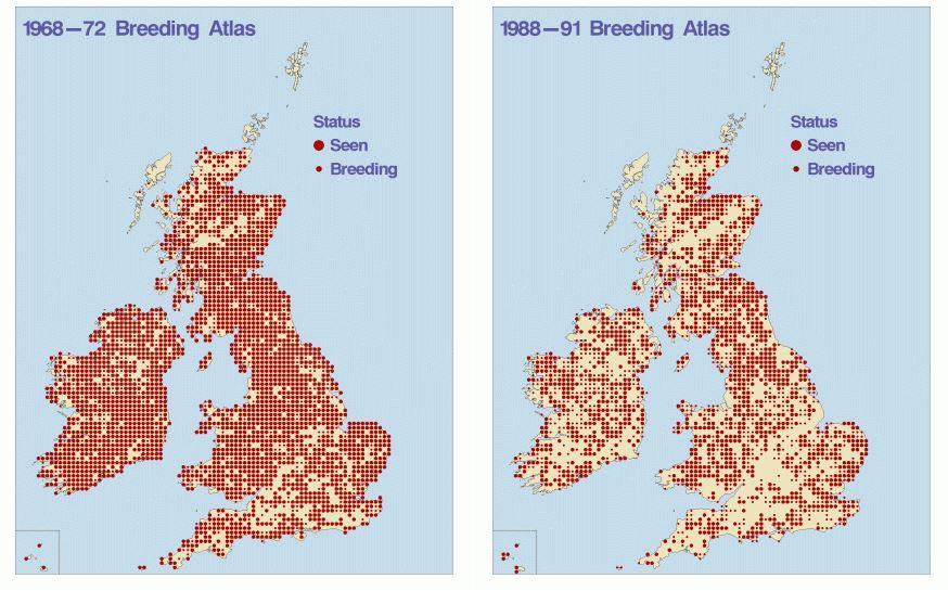 Sand Martin Breeding Maps