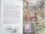 The Second Ladybird Book of British Birds - The Little Grebe