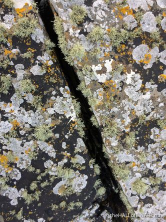 Lichen on the rocks - The Hall of Einar - photograph (c) David Bailey (not the)