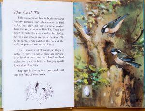Coal Tit - Ladybird Book of British Birds