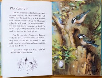 Coal Tit - Ladybird Book of British Birds