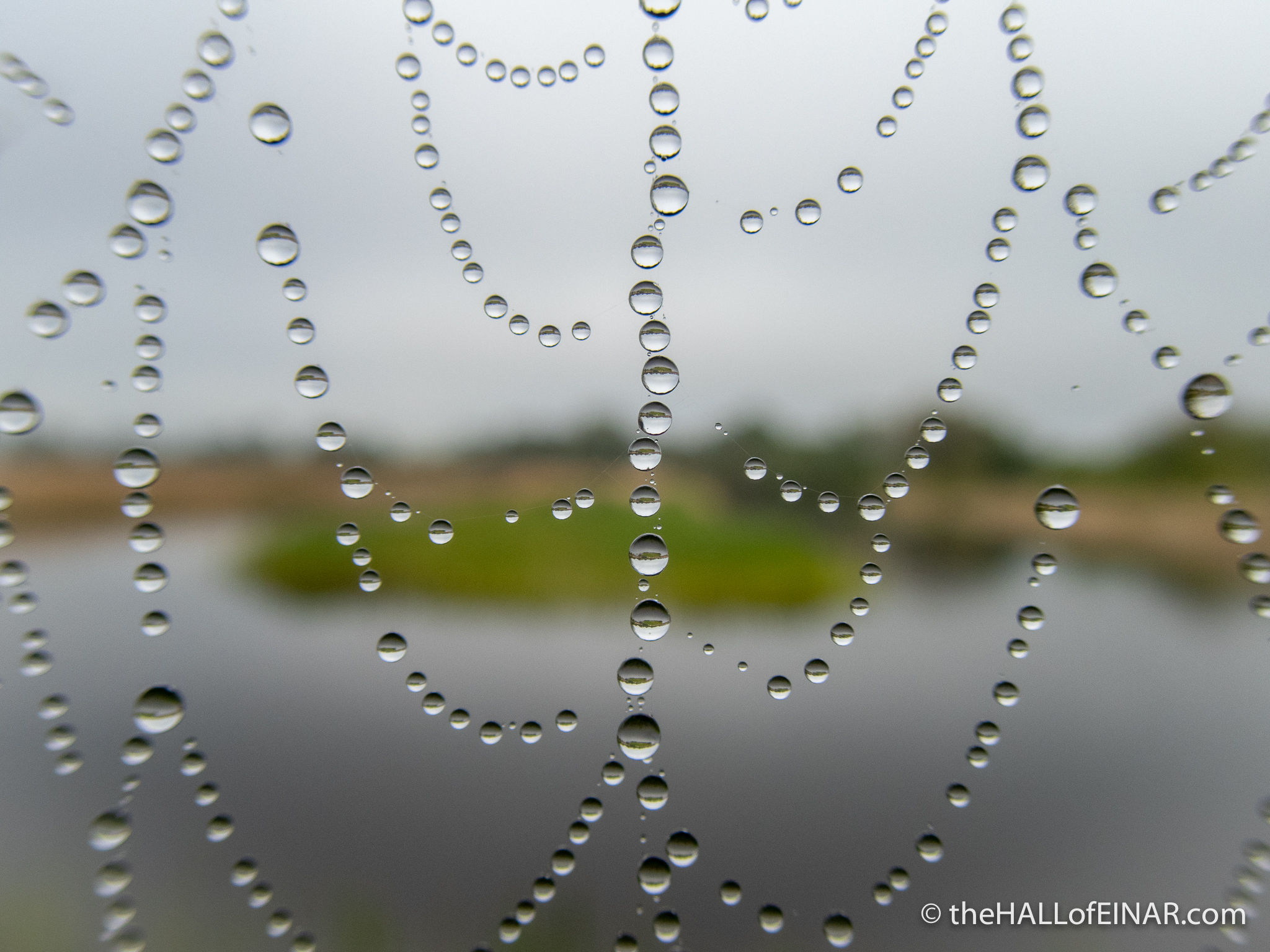 A necklace of raindrops - The Hall of Einar