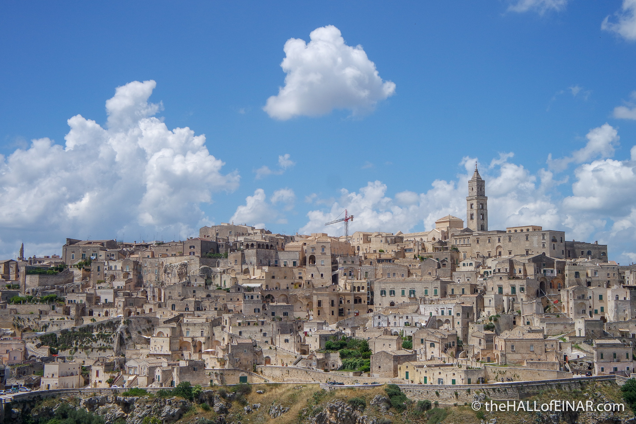 Giant Fennel - Matera - The Hall of Einar - photograph (c) David Bailey (not the)