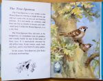 Tree Sparrow - Ladybird Book of British Birds