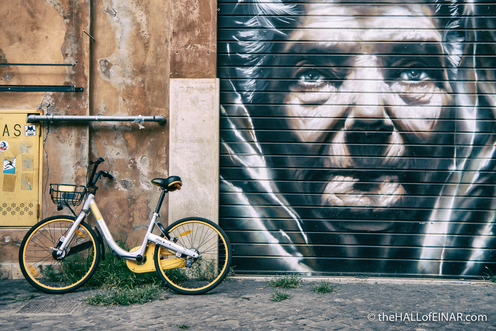 oBike - The Hall of Einar - photograph (c) David Bailey (not the)