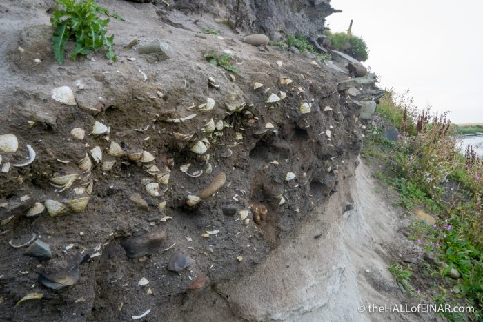 Ancient midden - The Hall of Einar - photograph (c) David Bailey (not the)