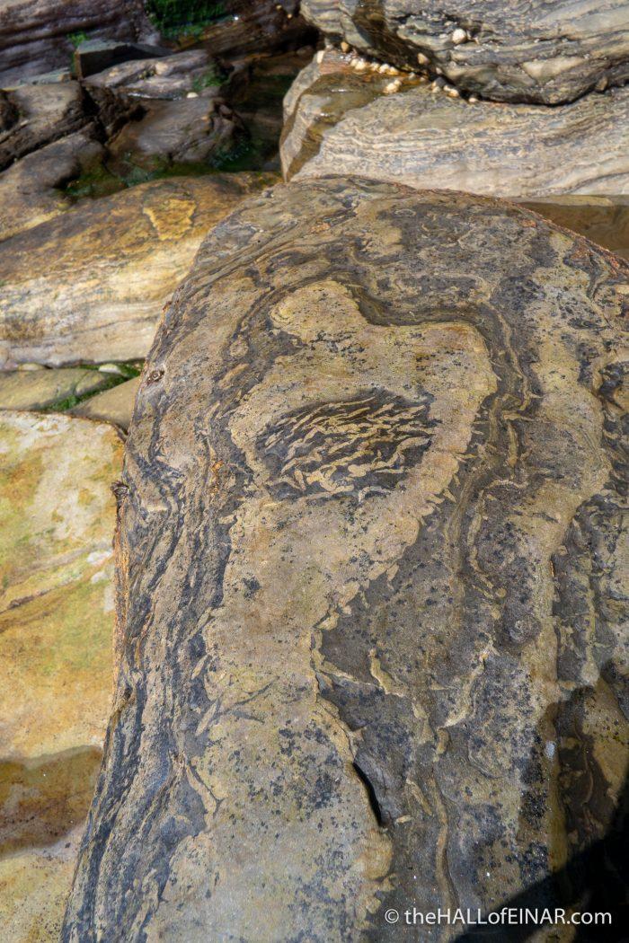 Gypsum pseudomorphs - Westray coast - The Hall of Einar - photograph (c) David Bailey (not the)