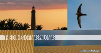 The dunes of Maspalomas, Gran Canaria - The Hall of Einar