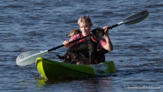Doggy Paddle - The Hall of Einar - photograph (c) David Bailey (not the)