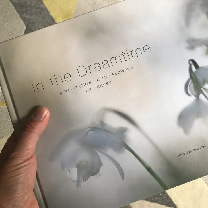 In The Dreamtime - Nicki Gwynn-Jones