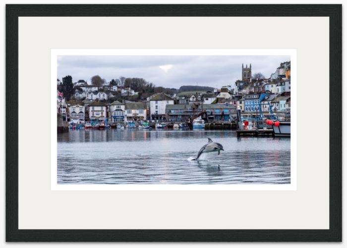 36 x 20 cm Christmas Dolphin Brixham Harbour - The Hall of Einar - photograph (c) David Bailey (not the)