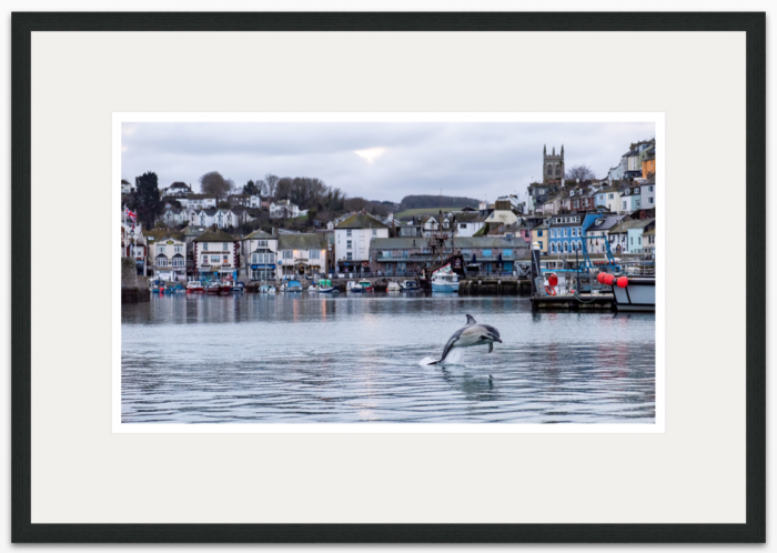 53 x 30 cm Christmas Dolphin Brixham Harbour - The Hall of Einar - photograph (c) David Bailey (not the)