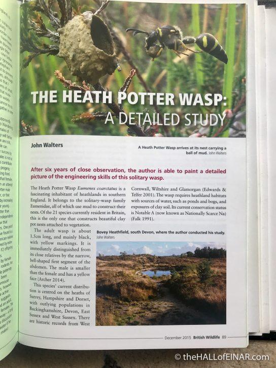 Heath Potter Wasps - The Hall of Einar