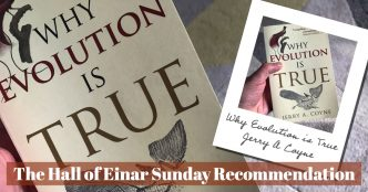 Sunday Recommendation - The Hall of Einar