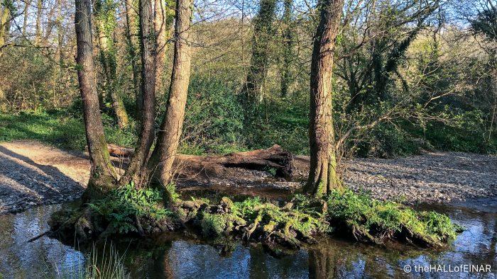 River Lemon - The Hall of Einar - photograph (c) David Bailey (not the)